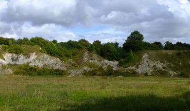An image of Wharram Quarry Nature Reserve
